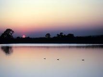 Free Reservoir Stock Photos - 23462453