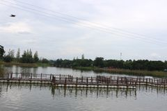 Reservoir and bridge made of bamboo royalty free stock photo