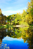 Reservoir in city park an autumn. Day Royalty Free Stock Images