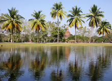 Reservoir and coconut tree. A reservoir near temple in Sukhothai historical park, Thailand, that have coconut tree around a pool stock photography