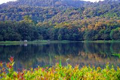 Reservoir in der Natur Stockfotografie