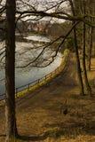 Reservoir hinter Bäumen Stockbild