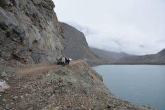 Reservoir im Paprika Stockbild