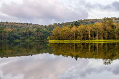 The Reservoir at Jedkod Pongkonsao Natural Study and Ecotourism Center. Royalty Free Stock Photos