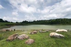 Reservoir Royalty Free Stock Photos