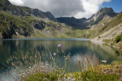 Reservoir in the mountains of the Spanish pyrenees Royalty Free Stock Image