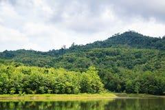 Reservoir an natürlichen Studie Jedkod Pongkonsao und am Umwelttourismus-Cent lizenzfreies stockfoto