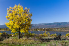 Reservoir Pinilla, Madrid Stock Images