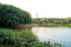 Reservoir scenery Royalty Free Stock Images