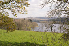 Reservoir and Tor. Looking through the trees towards Burrator reservoir in Dartmoor National park in Devon Royalty Free Stock Photos