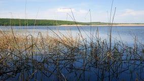 Reservoir in Ukraine, a simple landscape. Reservoir in Ukraine, a simple landscape stock footage