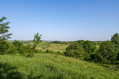 Reservoire und Feld Shelterbelts Lizenzfreie Stockfotografie