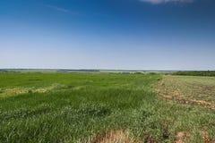 Reservoire und Feld Shelterbelts Lizenzfreies Stockbild