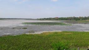Reservoirlandschaft in Khonkaen Stockbild