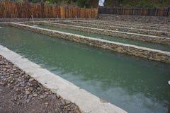 Reservoirs met water voor groeiende vissen stock afbeelding