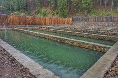 Reservoirs met water voor groeiende vissen royalty-vrije stock afbeeldingen