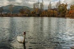 Reservoirs, waterbezinningen en mooie hemel stock foto
