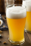 Resfreshing Golden Lager Beer Stock Photography