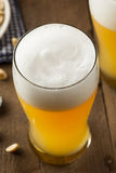 Resfreshing Lager Beer dorato fotografie stock libere da diritti