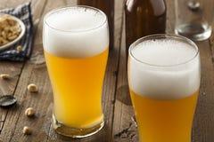 Resfreshing Lager Beer dourado imagem de stock