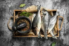 Resh Dorado fish with spices on an old tray. On a rustic background Royalty Free Stock Images