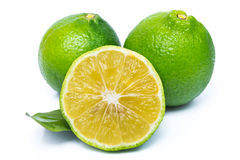 Resh limes isolated on white Stock Photography