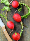 Resh radishes Stock Photo