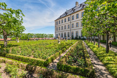 The Residence rose garden of Bamberg, Germany Royalty Free Stock Photography