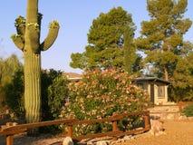 Residencia de Tucson Fotografía de archivo libre de regalías