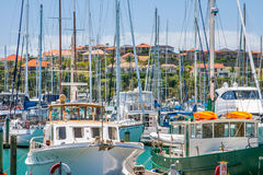 Residential area with marina on a foreground. Residential area at Whangaparoa, Auckland, New Zealand royalty free stock photography