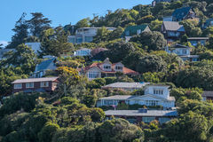 Residential area on Sumner Beach in Christchurch Royalty Free Stock Photo
