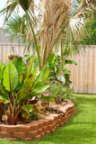 Residential backyard tropical flower bed Royalty Free Stock Photography