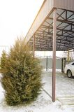 Residential car port. Yard of a house, winter royalty free stock images