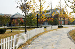 Residential district in fall Royalty Free Stock Photos