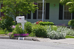 Residential Flower Garden. By the front mailbox Stock Photography