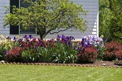 Residential Flower Garden. In front yard Stock Image