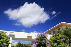 Residential hall buildings under blue sky. Residential hall buildings on college campus Royalty Free Stock Photography
