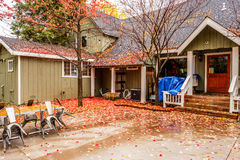 Residential home with garden backyard at autumn rainy day. Fallen yellow and red autumn leaves on the wet pavement Royalty Free Stock Photos