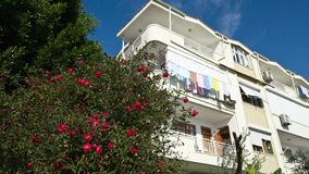 Residential house with drying Laundry on the balcony and a Bush of bright blooming roses next to it. Walk in Turkey stock photos