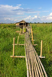 Residential house on stilts with a bamboo pathway Royalty Free Stock Photography