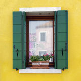 Residential house window in Burano. Traditional colorful residential house window with opened shutters and flower pot in venetian island of Burano Royalty Free Stock Image