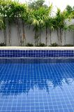 Residential inground swimming pool Royalty Free Stock Photos