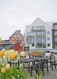 Residential modern building with tulips Stock Image