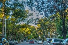 Residential neighborhood in Los Angeles Royalty Free Stock Image