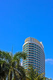Residential skyscraper and palm trees against bright blue sky. Royalty Free Stock Photography