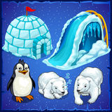 Residents of Antarctica and ice house. Penguin and polar bears vector illustration