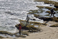 Residents looking for seaweed around Paranggupito wonogiri Dadapan coast bordering the coastal mountain areas kidul jogjakarta cen Royalty Free Stock Image