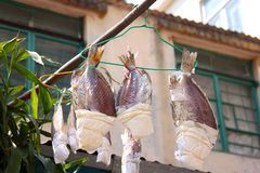 Sun Dried Salted Fish in Tai O, Hong Kong. Residents of Tai O fishing village in Hong Kong`s Lantau Island hang salted fish to dry in the sun. Salted fish is a Stock Images
