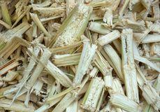 Residue of sugar cane. Residue of sugar cane that has been crushed Stock Photography