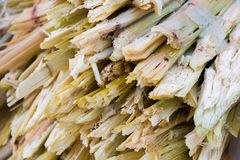 Residue of sugar cane. The rest from the juice of sweet water was removed Stock Photo